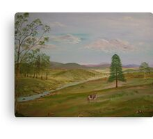 Cow Country Canvas Print