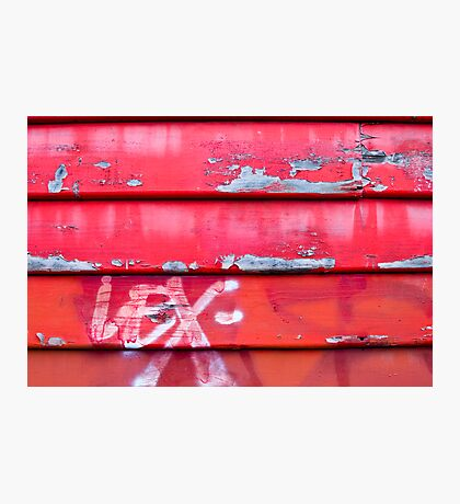 Red fence Photographic Print