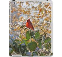 Early Snow iPad Case/Skin