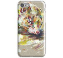 Ferret IV iPhone Case/Skin