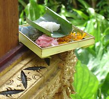 Balinese Offering by Tara Antler