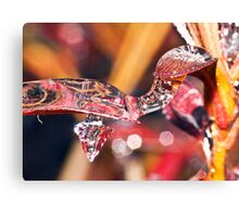 Turtle Icicle ! Canvas Print