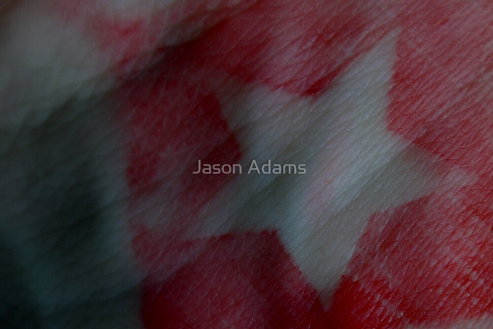 Star by Jason Adams