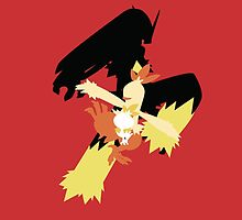 Torchic Evolutions by justcastWAUDBY