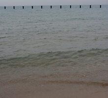 At the Lake by visualsplat