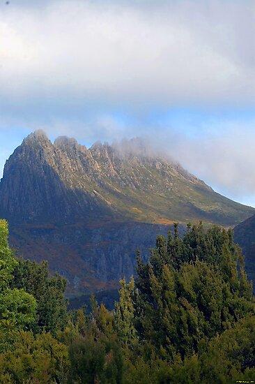 Wilderness Fantasy - Cradle Mountain National Park, Tasmania, Australia by Philip Johnson
