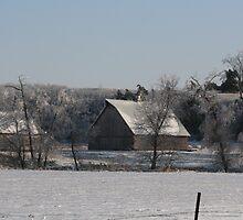 Iowa Winter by Rick  McFarland