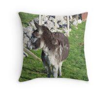 Donkey.  Throw Pillow