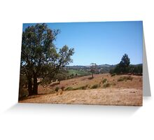 Summer in the Adelaide Hills Greeting Card