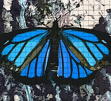 Butterfly Blues by Robin D. Overacre