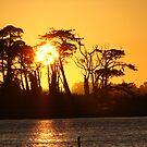 California Sunset by Rhonda  Thomassen
