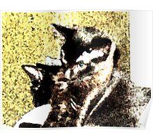 Ebony and Midnight - Fresco II Poster