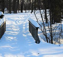 Footbridge to the Lake in Park Voyageur by TerriRiver