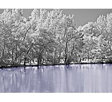 Dreaming Of Winter Photographic Print