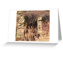 Overgrown Stonework Greeting Card