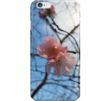 Blue Skies and Winter Blossom iPhone Case/Skin