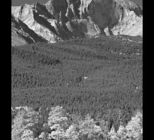 Longs Peak 14259 Ft Black and White Poster by Bo Insogna