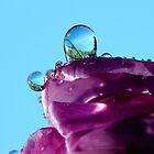 Crystal Balls by ~ Fir Mamat ~
