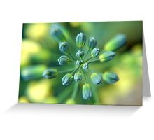 Broccoli Flower Greeting Card