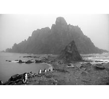 Penguin Gothic Photographic Print