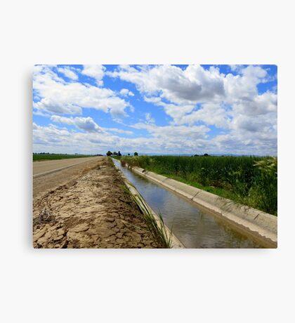 Irrigation Row Canvas Print