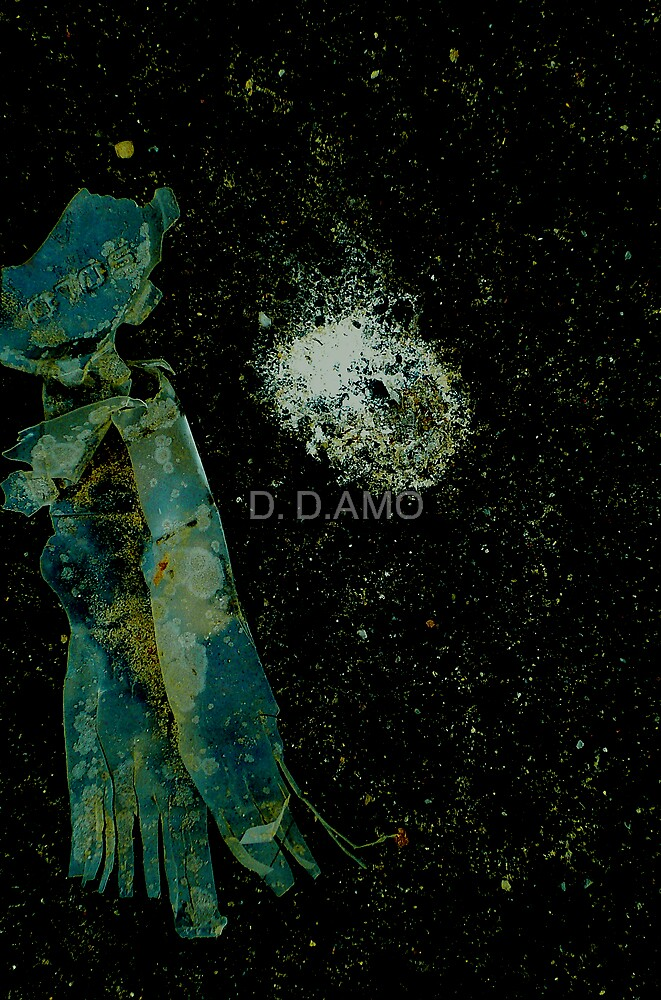 SOLO Dreaming by D. D.AMO