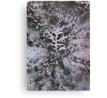 oak grey Canvas Print