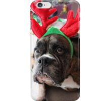 Reindeer This Year?...... Anything For That Cookie! iPhone Case/Skin
