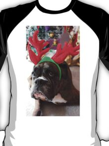 Reindeer This Year?...... Anything For That Cookie! T-Shirt
