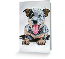Heeler Pup Greeting Card