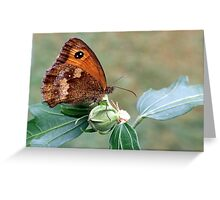 Gatekeeper 2 Greeting Card