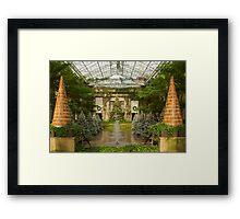 Gingerbread Trees  Framed Print