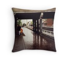 A touch of orange. Summer of 1997. Typical Dutch weather! Throw Pillow