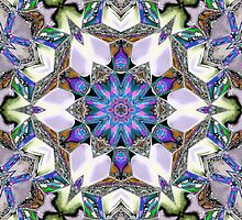 Far Out! Kaleidoscope by cresslerphotos
