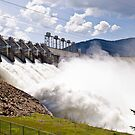 June Water Over the Dam by Bryan D. Spellman