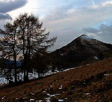 Mrzli Vrh At Sunset by Rok Cuder
