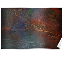 Rainy Day on the James River Poster