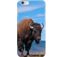 July Bison iPhone Case/Skin