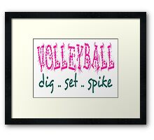 Volleyball Dig Set Spike (pink/green) Framed Print