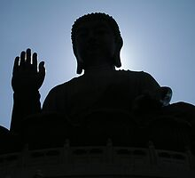 Buddha says hello by Cvail73