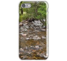 August on Mill Creek iPhone Case/Skin