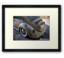Jaren's Beetle  Framed Print