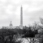 Washington DC Skyline by Brad Staggs