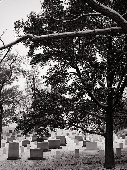 Arlington Cemetary in the Snow #1 by Brad Staggs