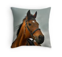 Our thoroughbred horse on his 20th birthday Throw Pillow