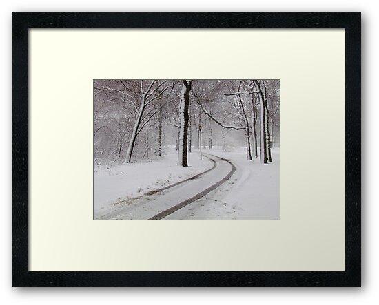Snowy morning in Bronx, New York City  by Alberto  DeJesus