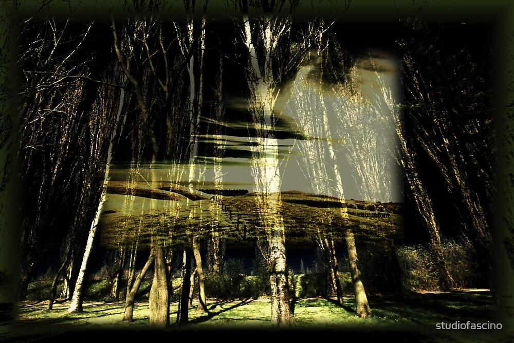 landscape by studiofascino