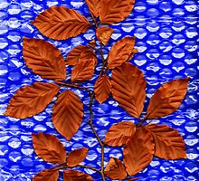 Leaves on Blue Background by Chris Cutler