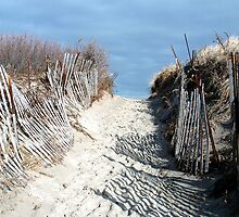 Footsteps to the beach by craigsphotos