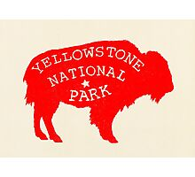 Yellowstone Park  Photographic Print